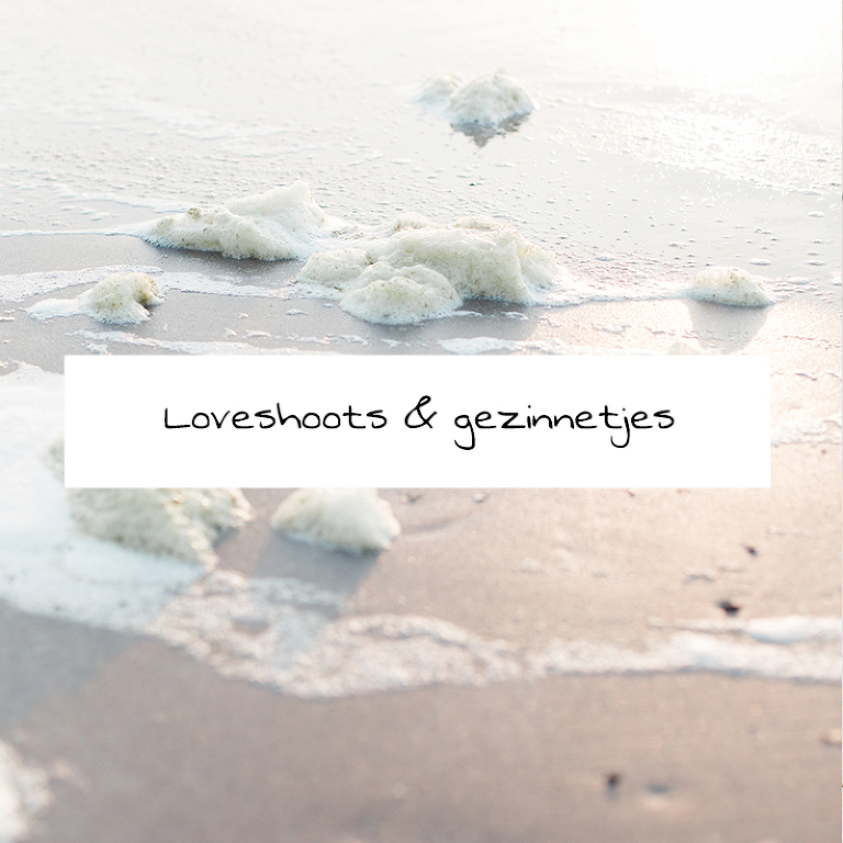loveshoots noord-holland